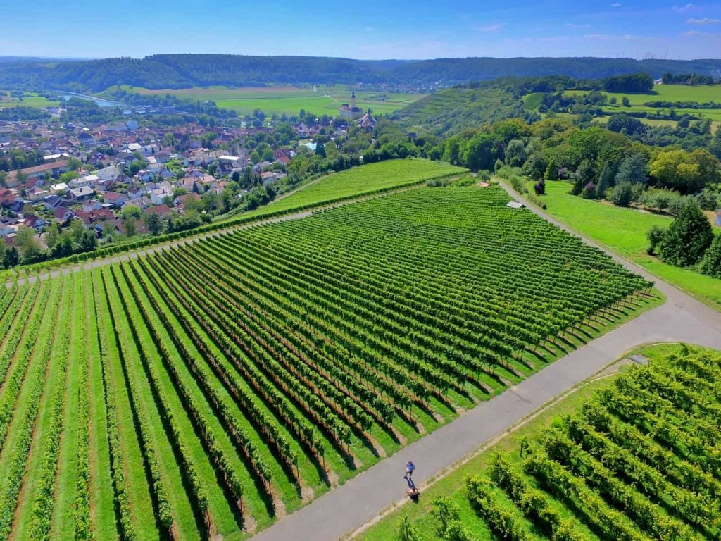 Záber vinice z drona